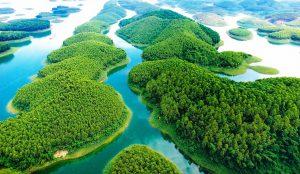 Kinh nghiệm du lịch hồ Thác Bà – hồ nước nhân tạo lớn nhất Việt Nam